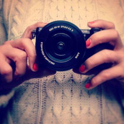 Fotoshooting TwistheadCats Blog 24 Things