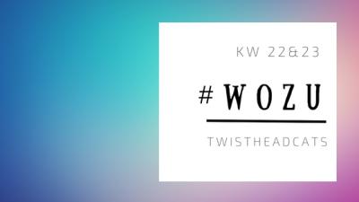 #WoZu KW 22 und 23 .png
